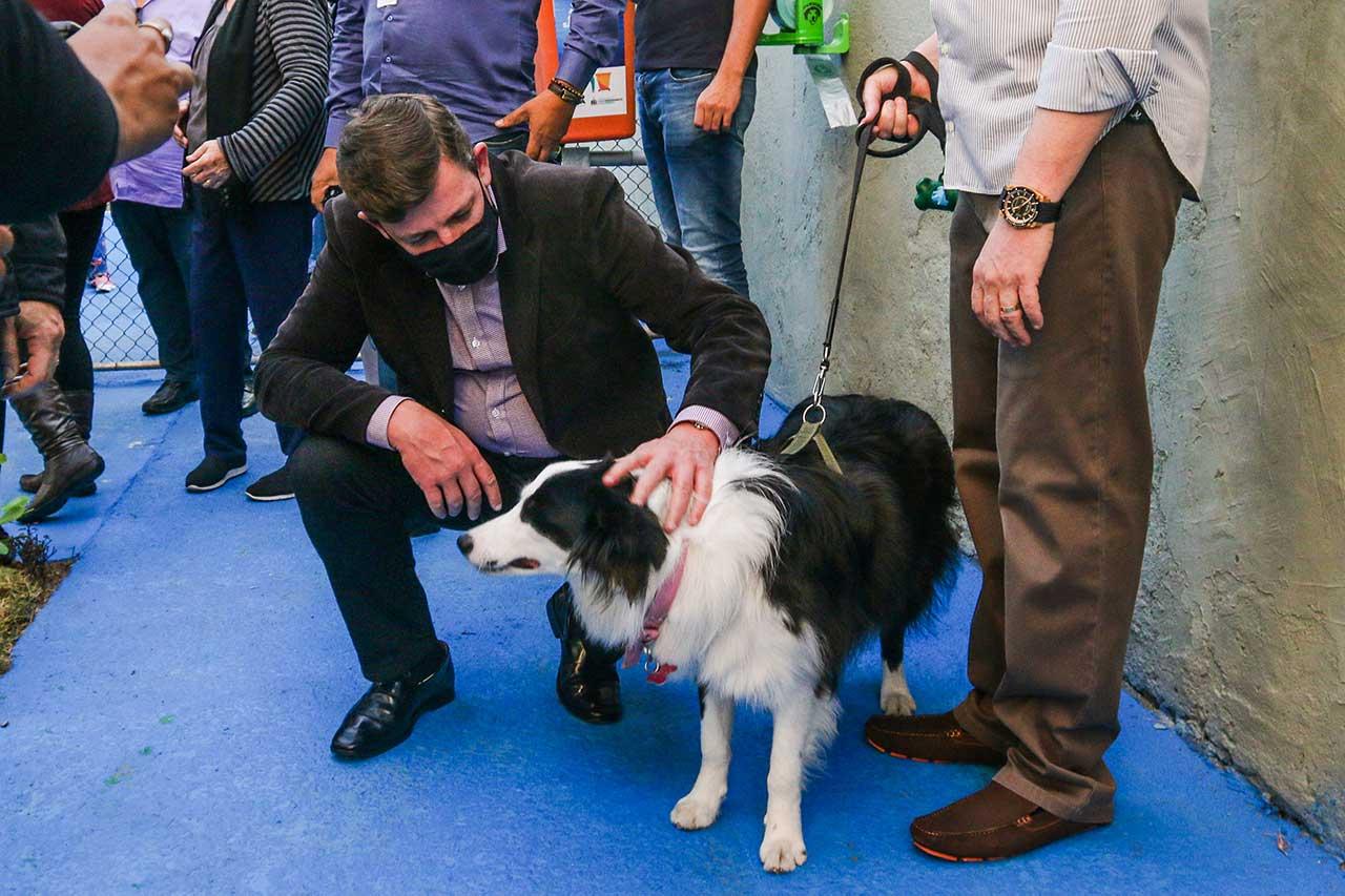 O fotógrafo Ricardo Bego Mantoan, 34 anos, tutor da cachorra Juju, aprovou a iniciativa.