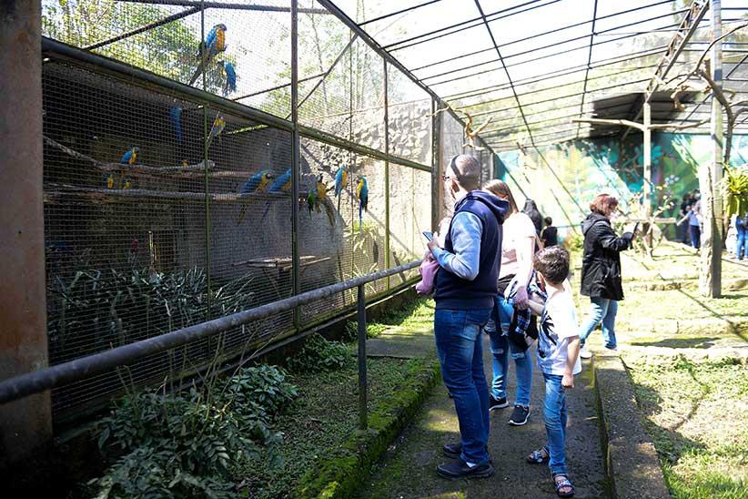 Zoológico de São Bernardo ganha novo morador com nascimento de filhote de lontra