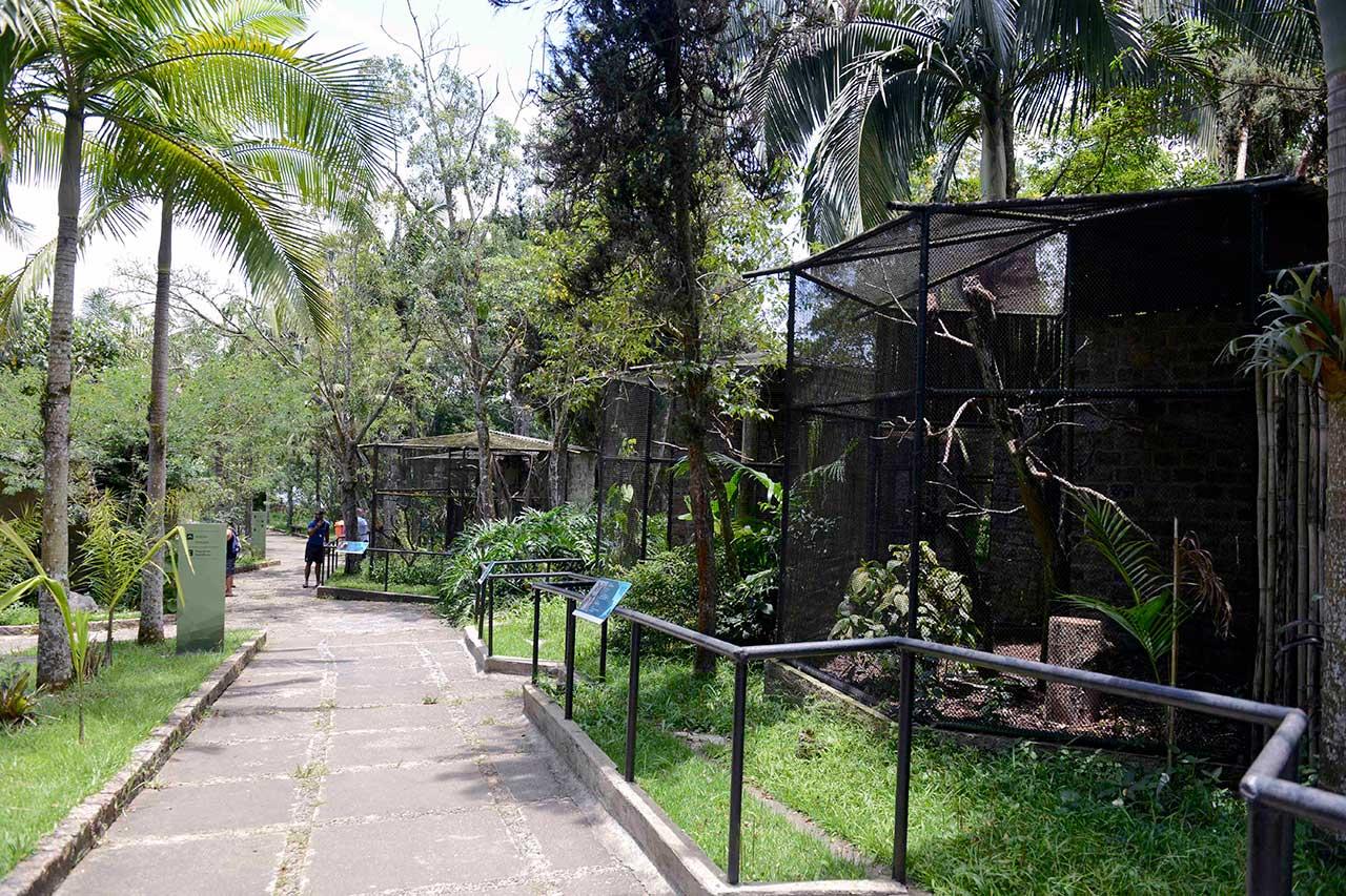 Programação  está repleta de atividades para quem deseja curtir o período de descanso na cidade em diversos equipamentos como a Pinacoteca, Cidade da Criança,  Parque Estoril e Zoológico Municipal