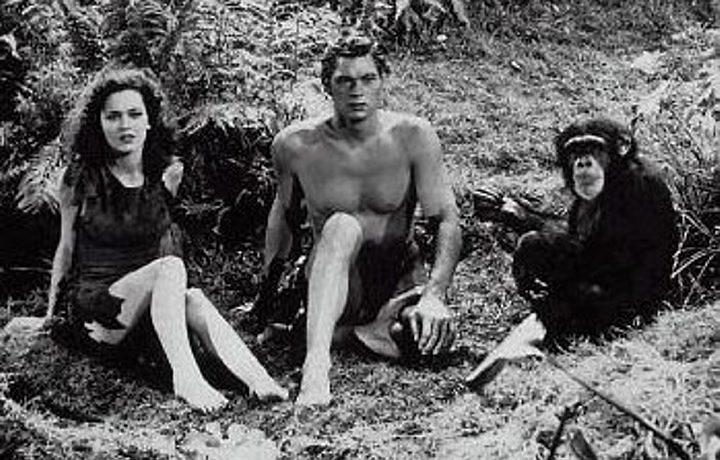 Chita, a chimpanzé que atuou em 'Tarzan', morreu aos 80 anos em 24 de dezembro