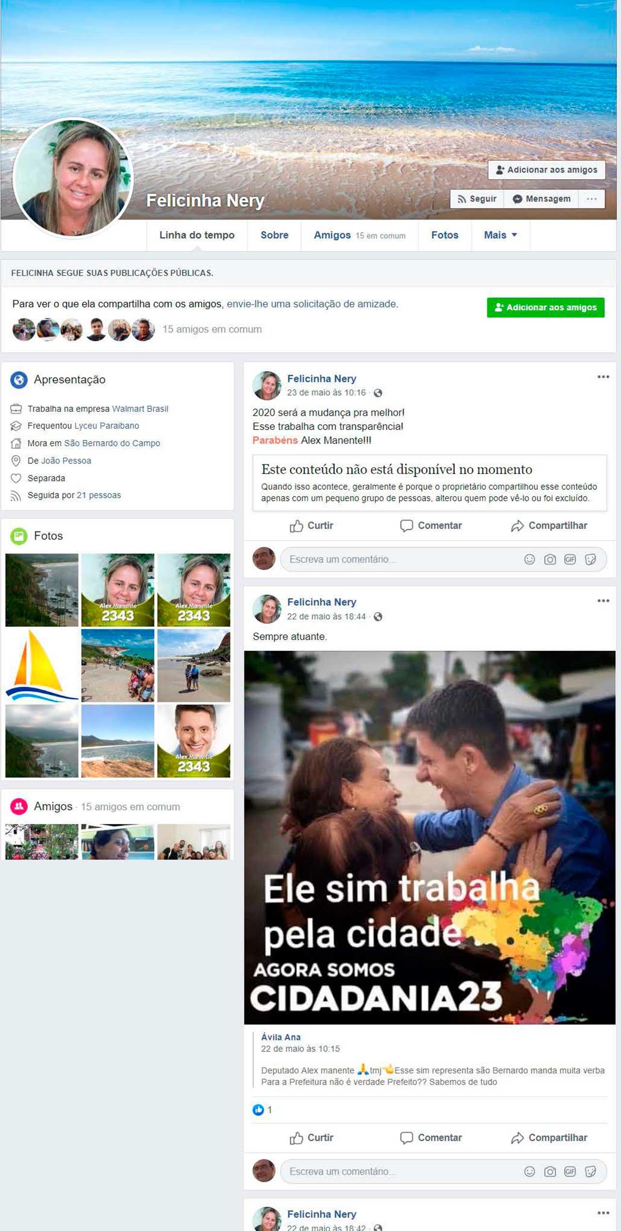 Fake Fekicinha Nery